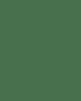 Strength Cure Best Blonde Shampoo 266ml
